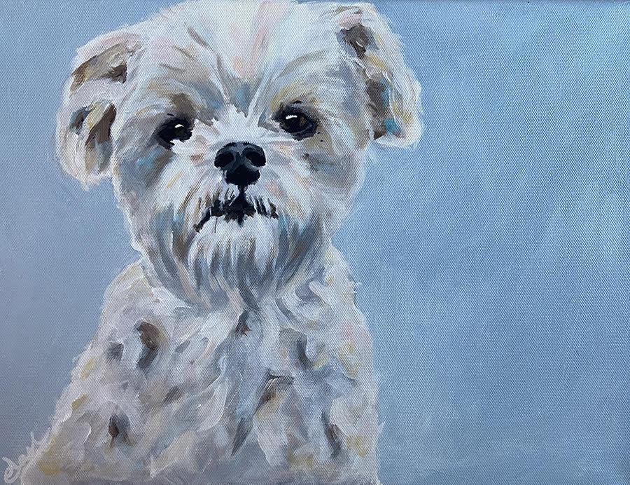 tasha rae dog portraits